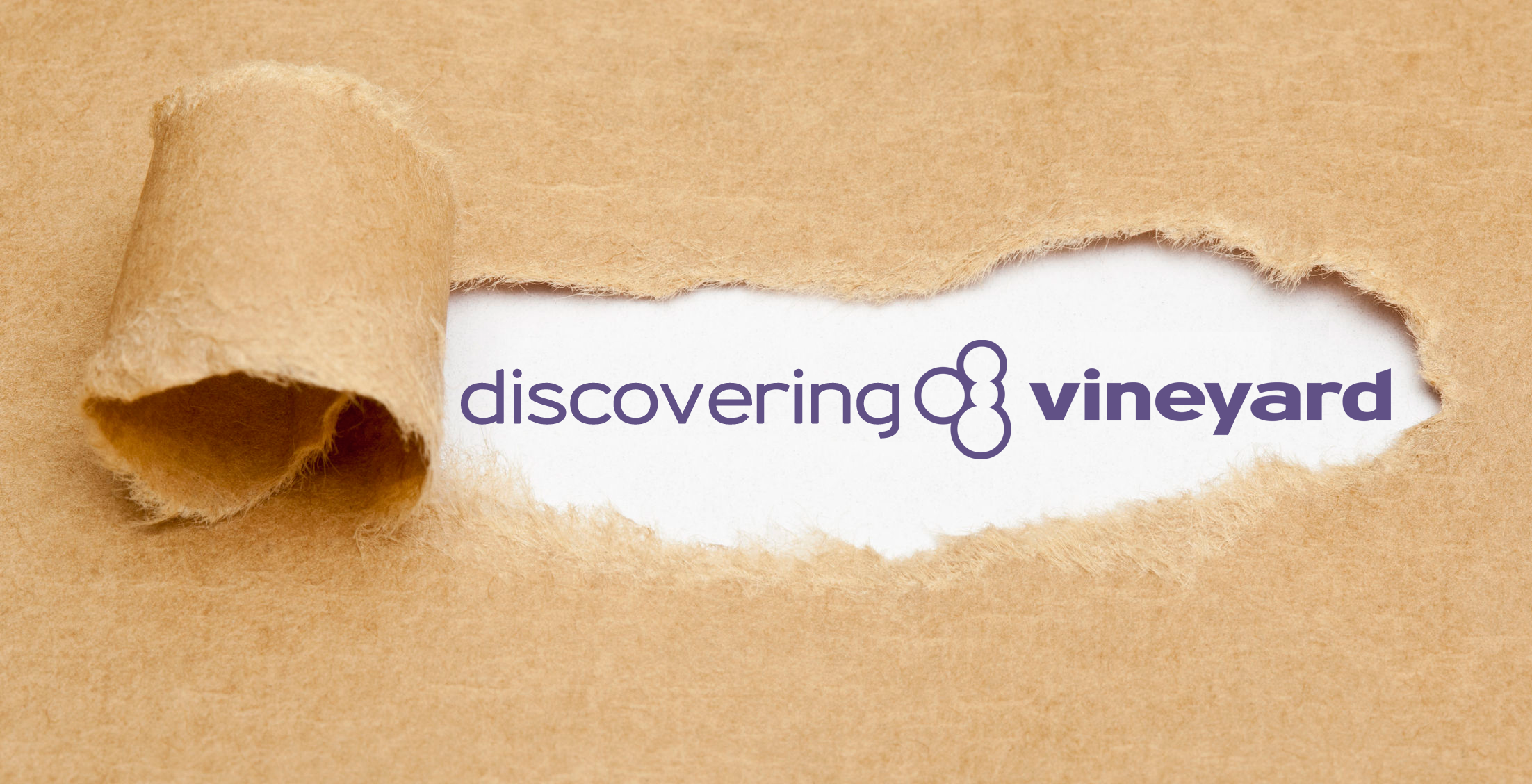 Discovering Vineyard evening – 20th Nov